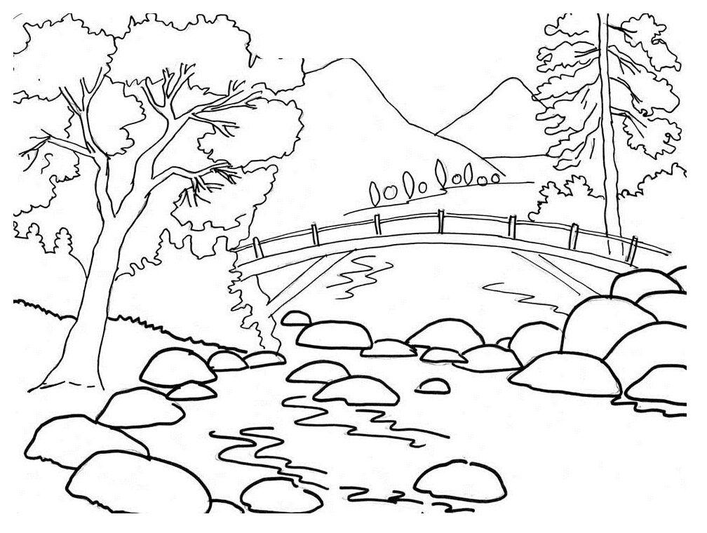 Bridge Landscape