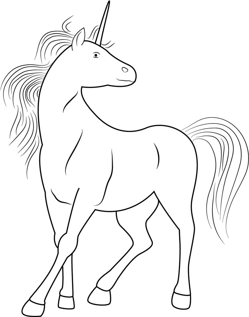 Unicorn Seeing