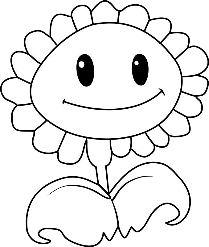 Sunflower Smiling
