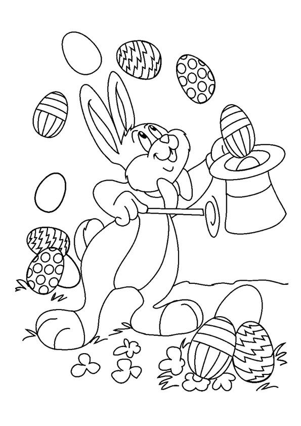 Magic Show Of Bunny