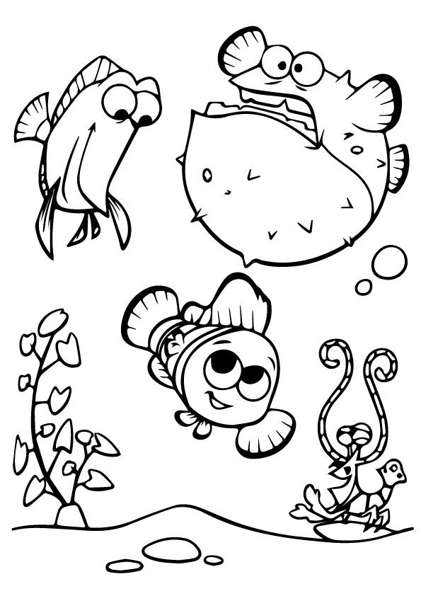 Happy Nemo With Friends