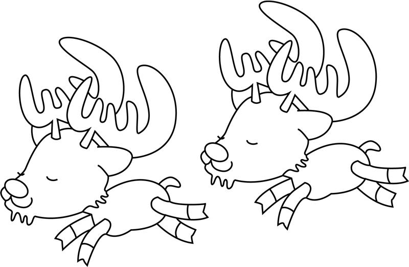 Baby Reindeers Chasing