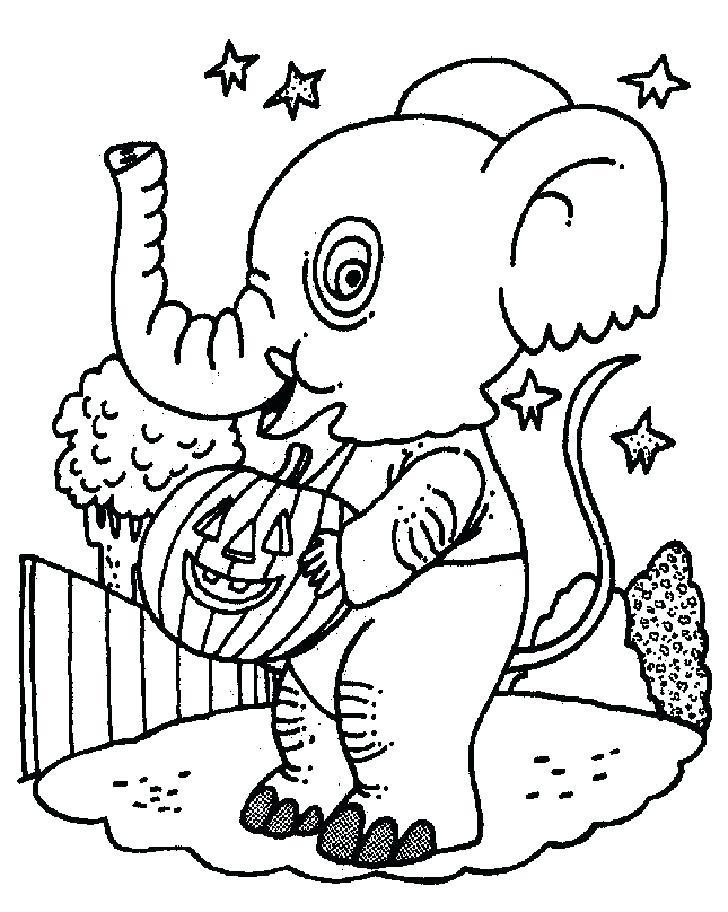Elephant With Pumpkin