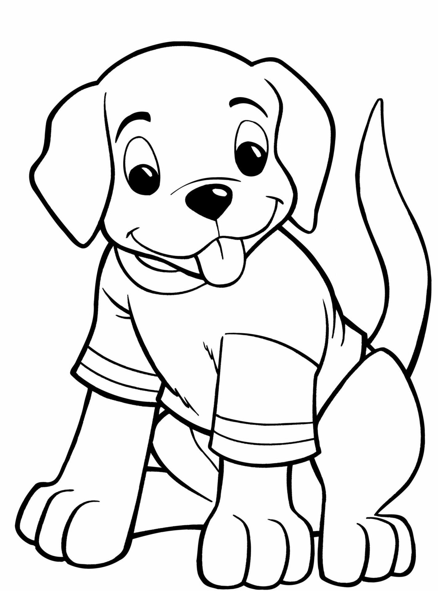 Puppy Wearing T Shirt