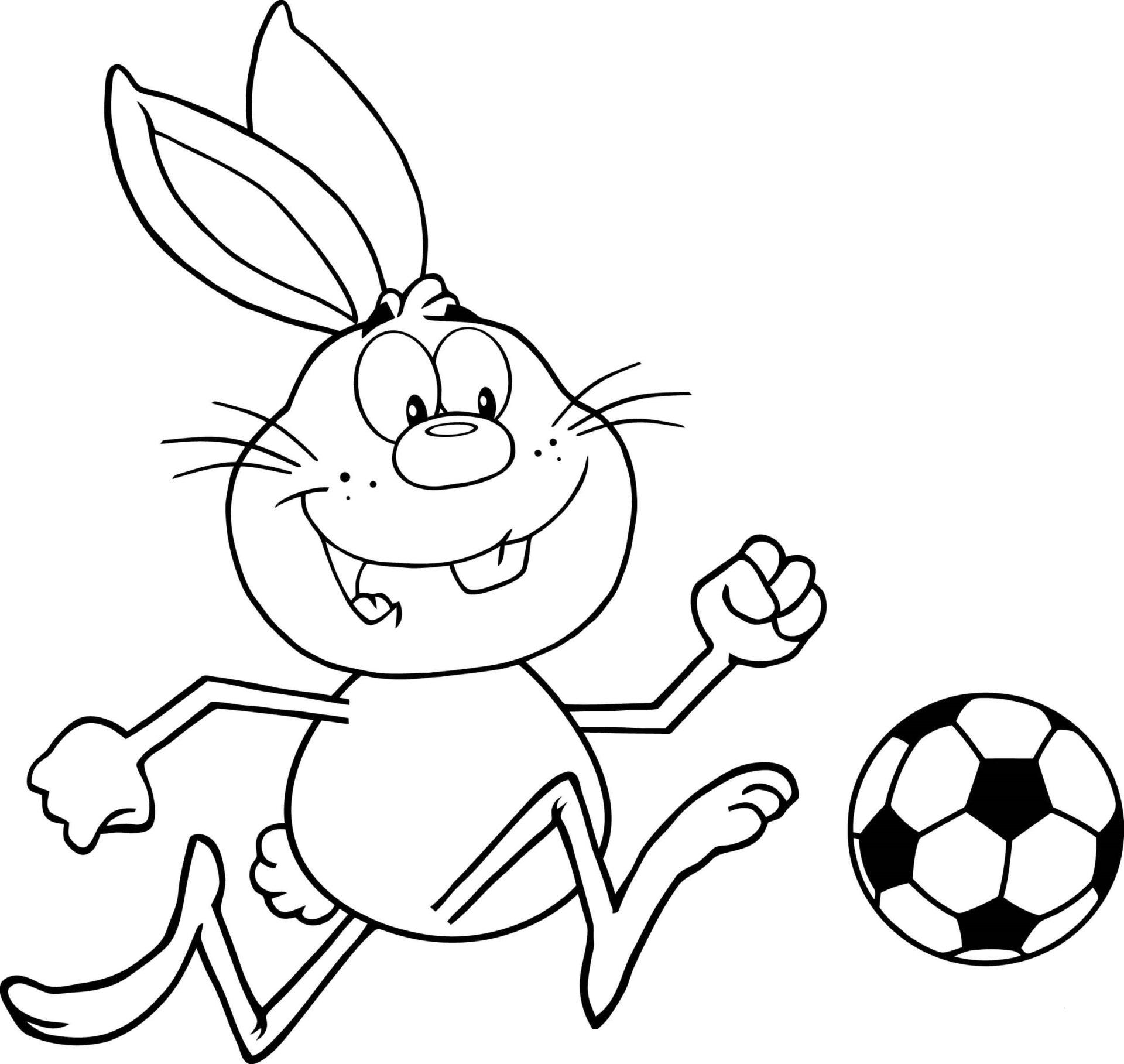 Rabbit Playing Soccer