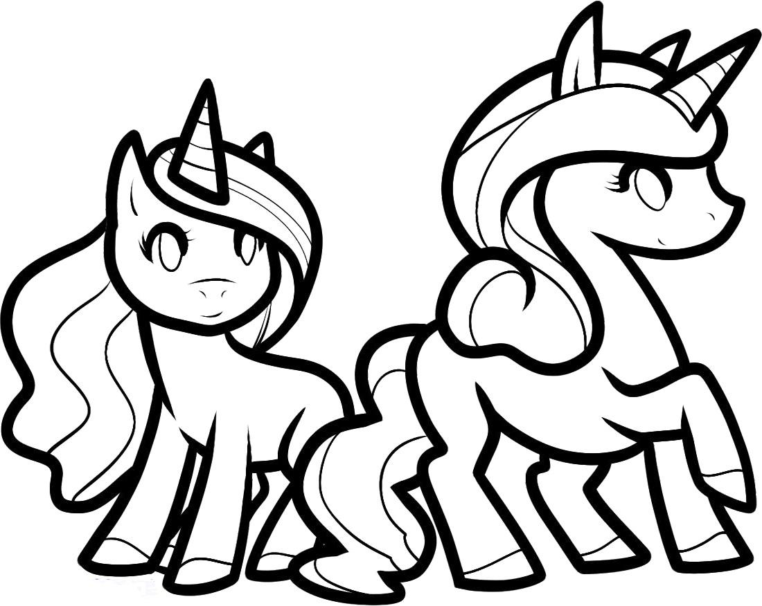 Twins Unicorn