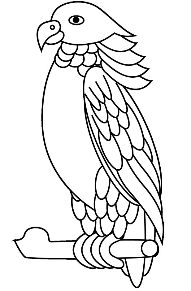 A Sisserou Parrot