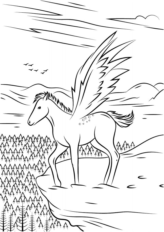 Bella Unicorn