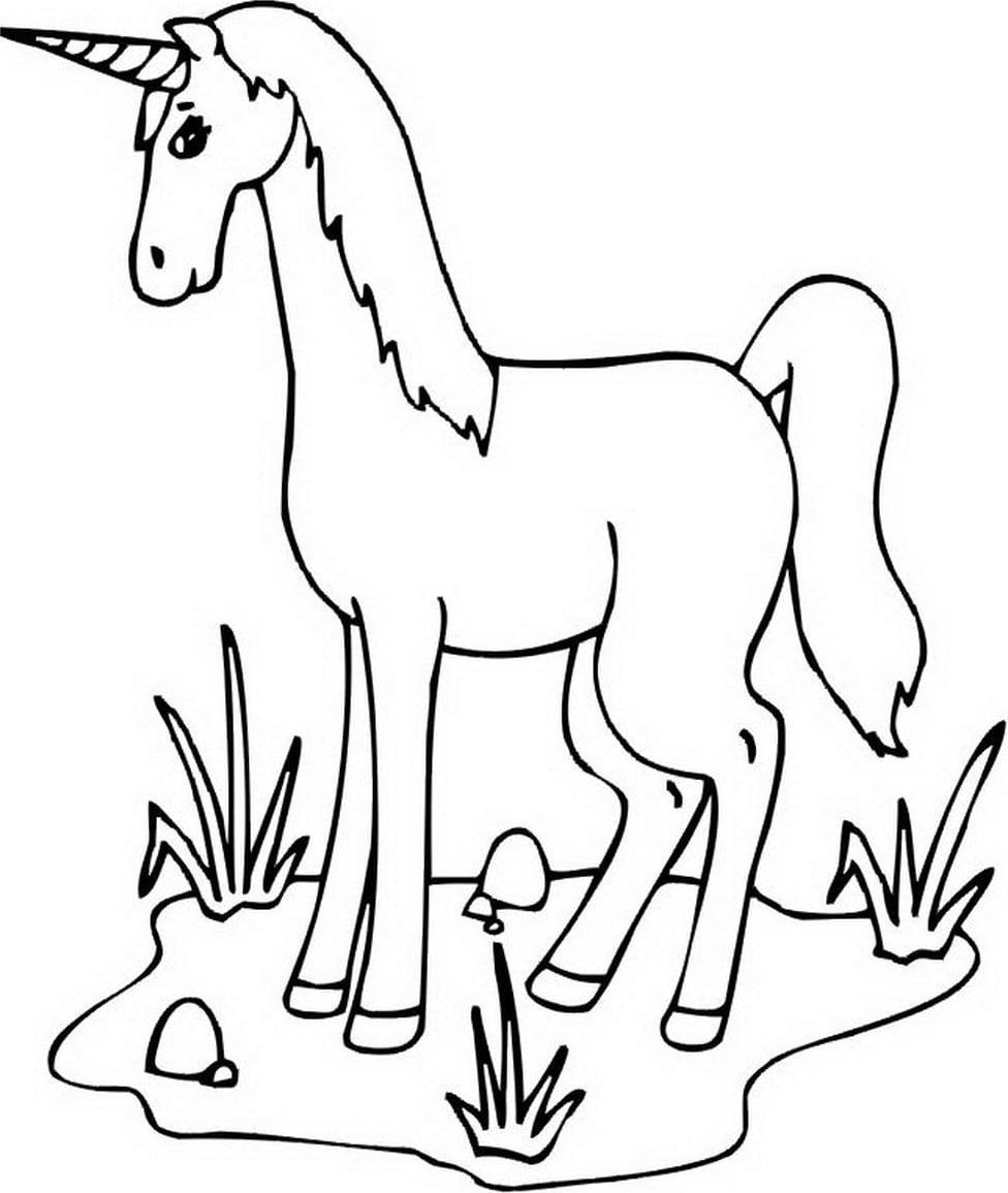 A Thin Unicorn