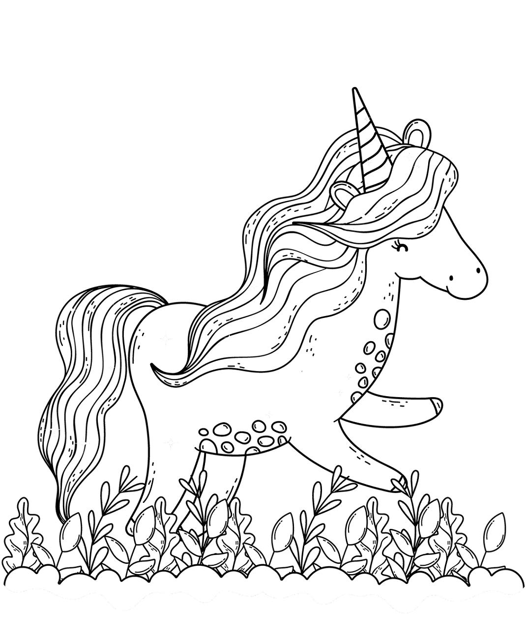 Unicorn Having Fun