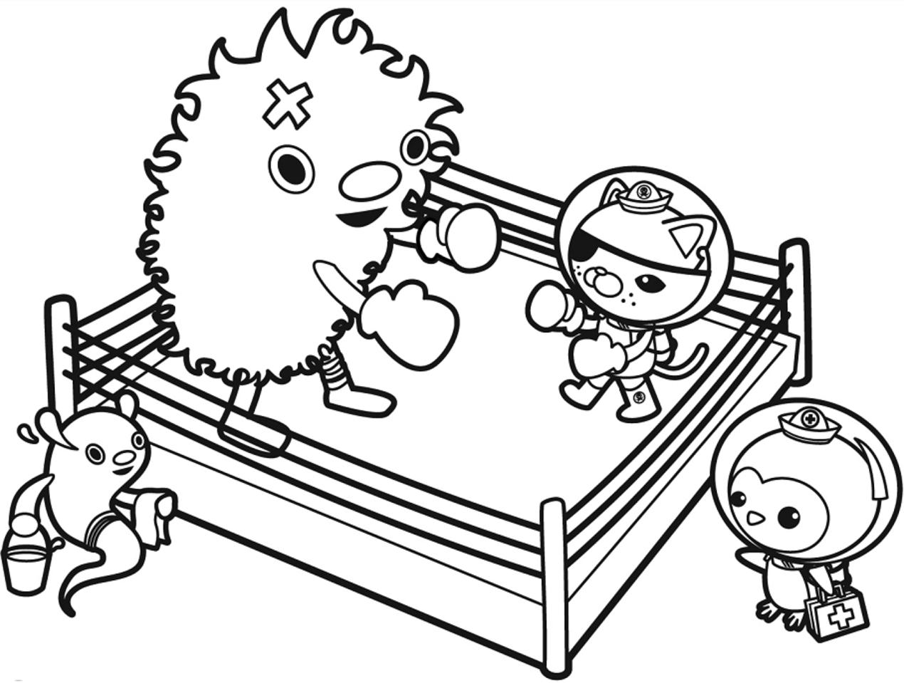 Octonauts Boxing