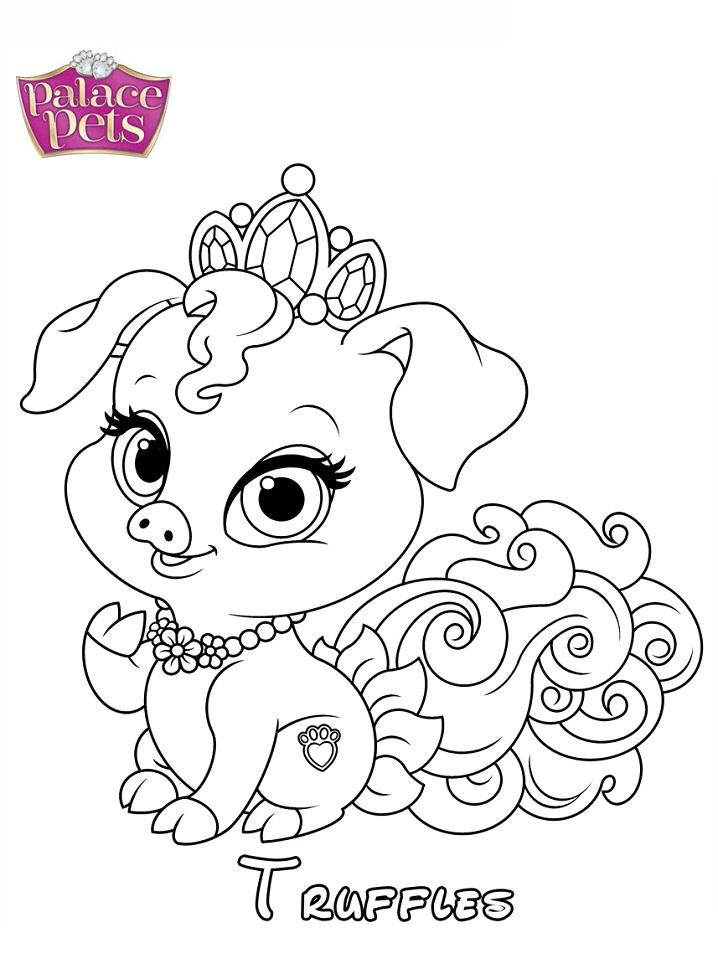 Truffles Princess