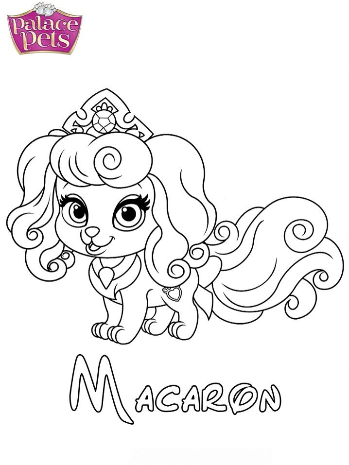 Macaron Princess
