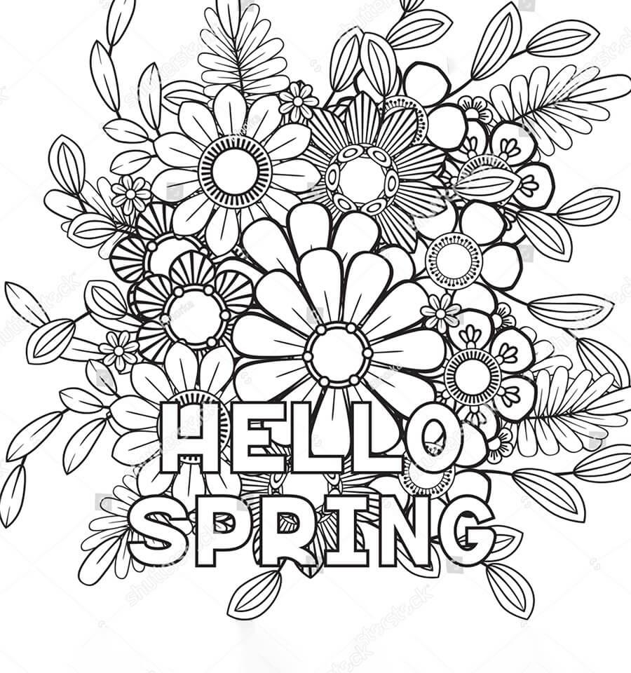 Hello Spring 2