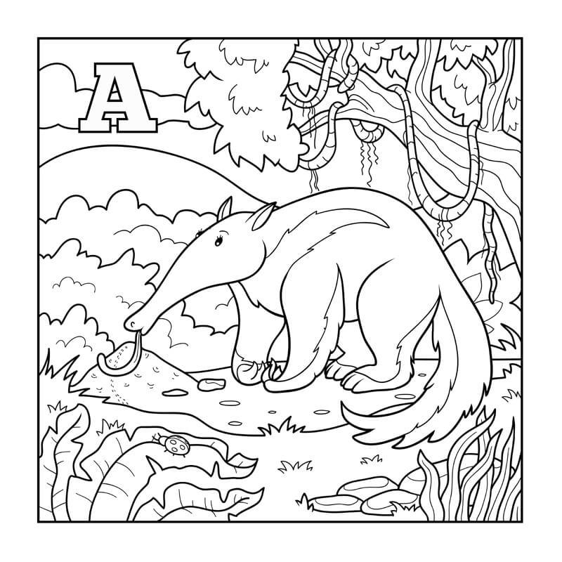 A Wild Aardvark