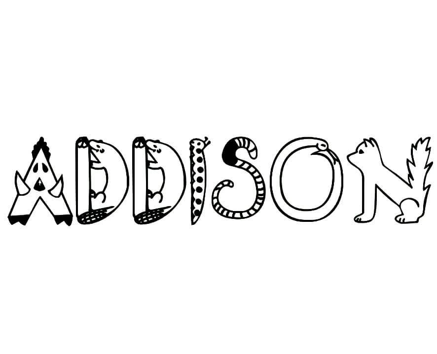 Addison 5