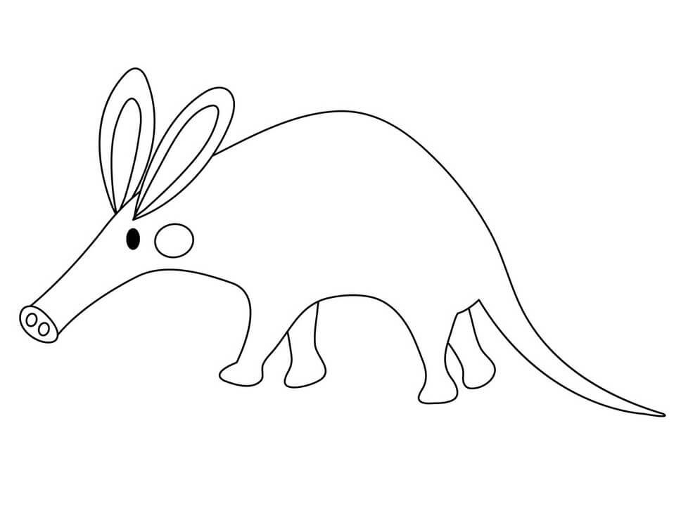 Adorable Aardvark