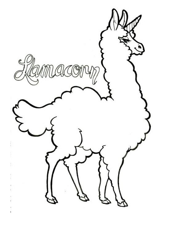 Amazing Llamacorn