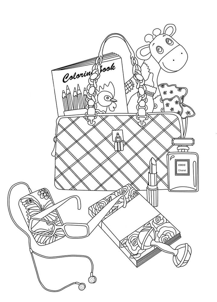 Bag and Feminine Accessories