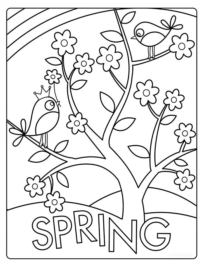 Beautiful Tree in Spring