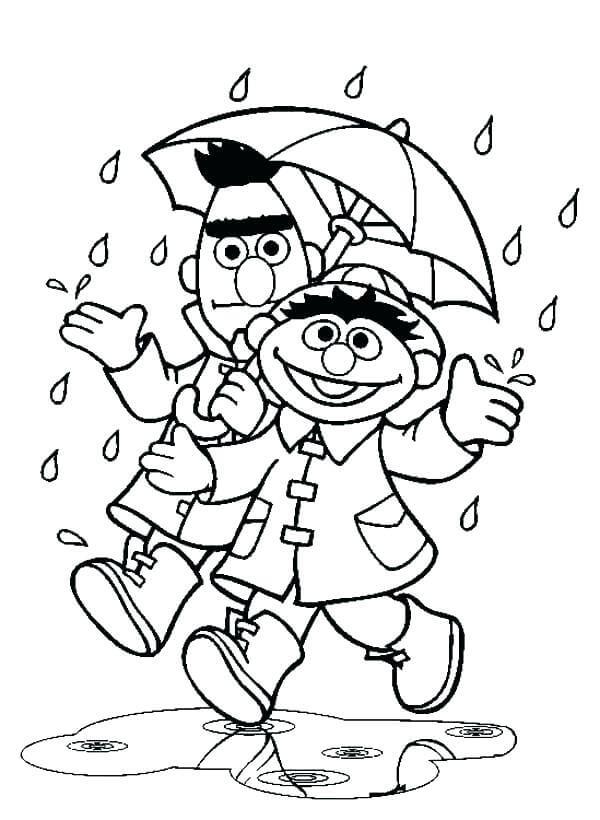 Bert and Ernie Rain