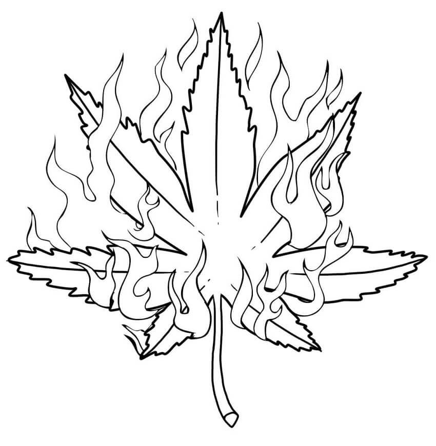 Burning Weed