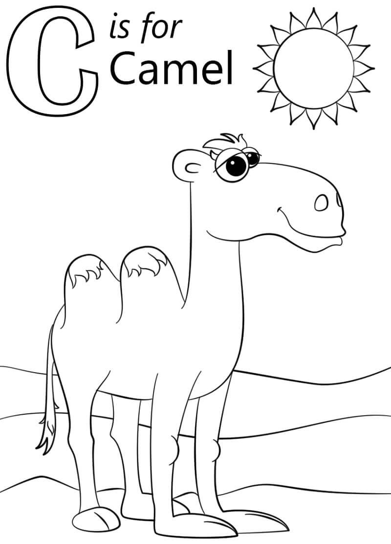 Camel Letter C