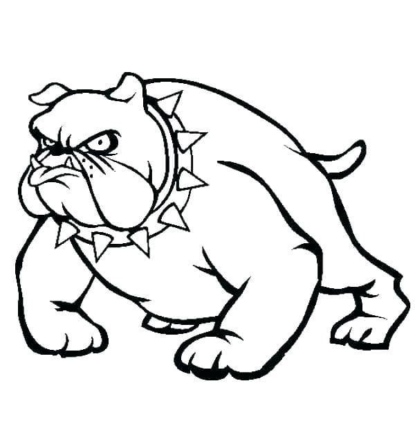 Cartoon Pitbull