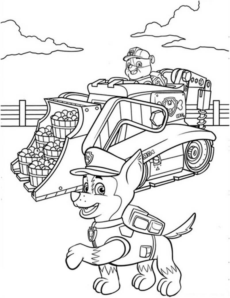 Chase Paw Patrol 16
