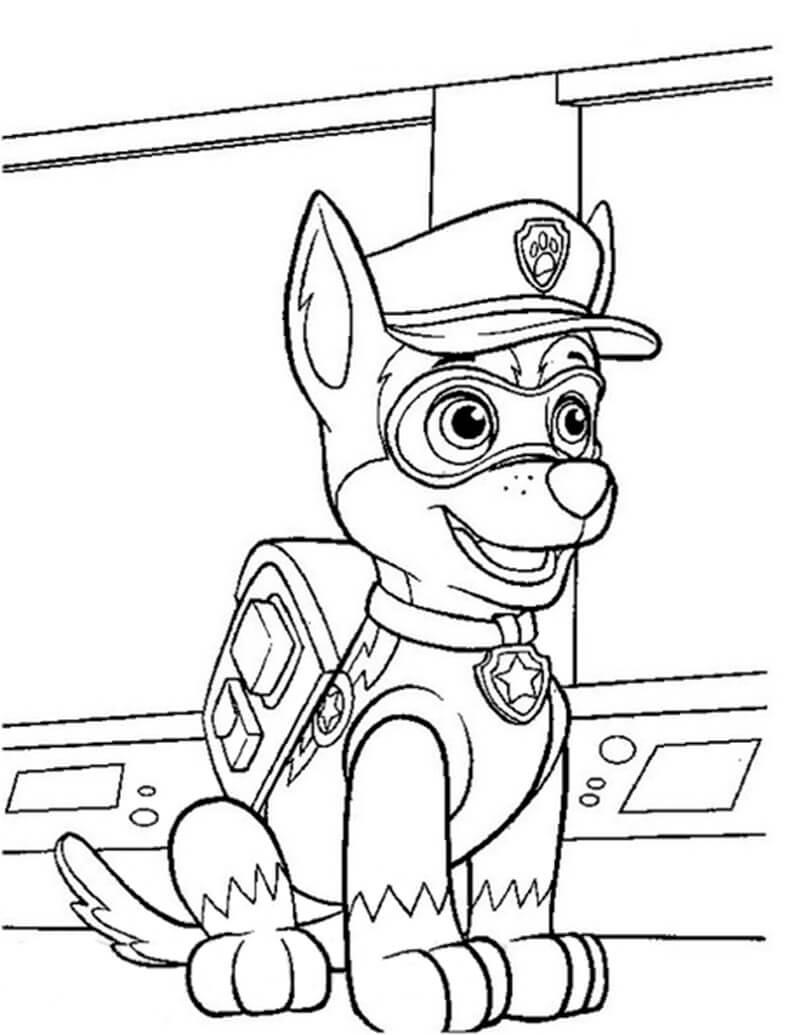 Chase Paw Patrol 17