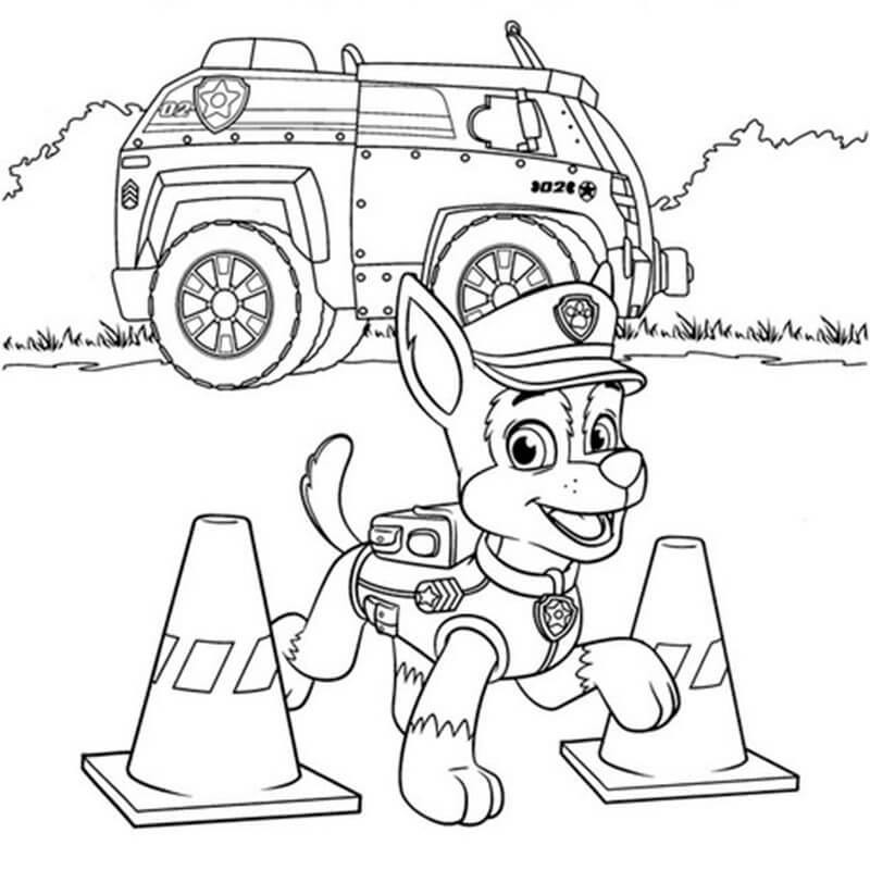 Chase Paw Patrol 3