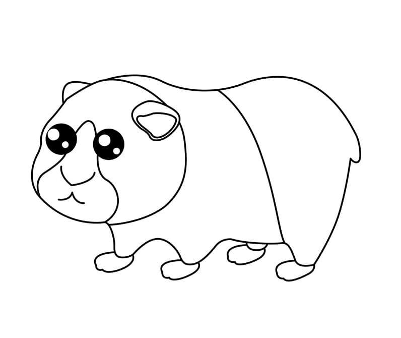 Cute Guinea Pig 2