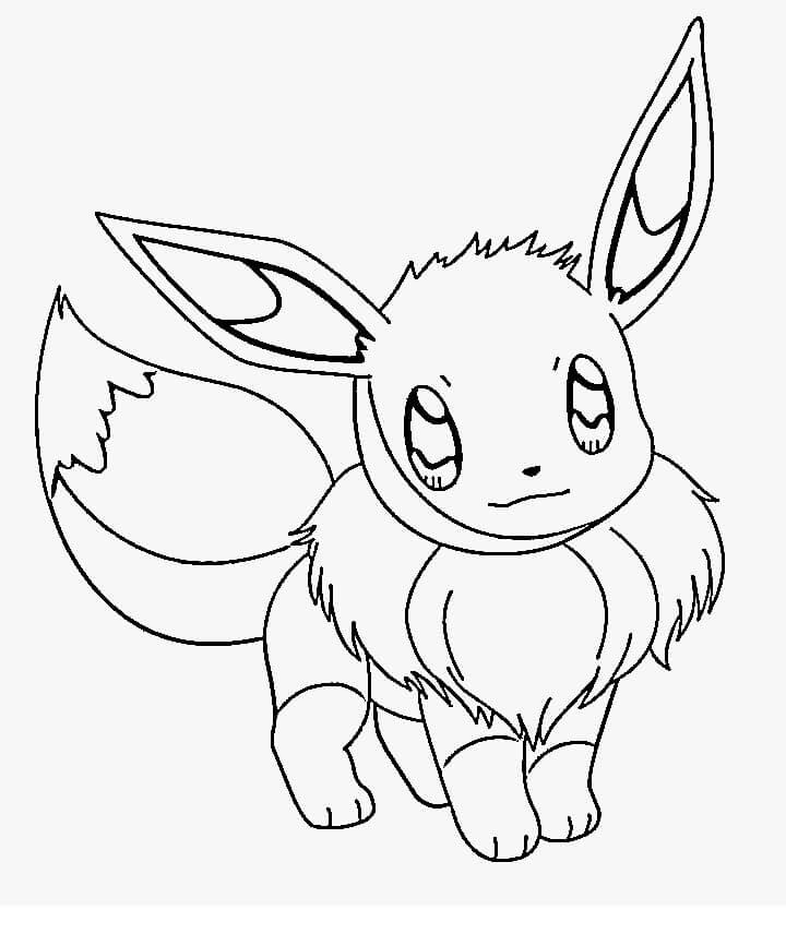 Cute Pokemon Eevee