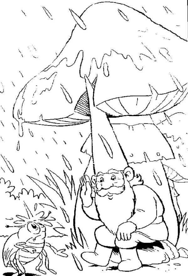 David the Gnome and Rain