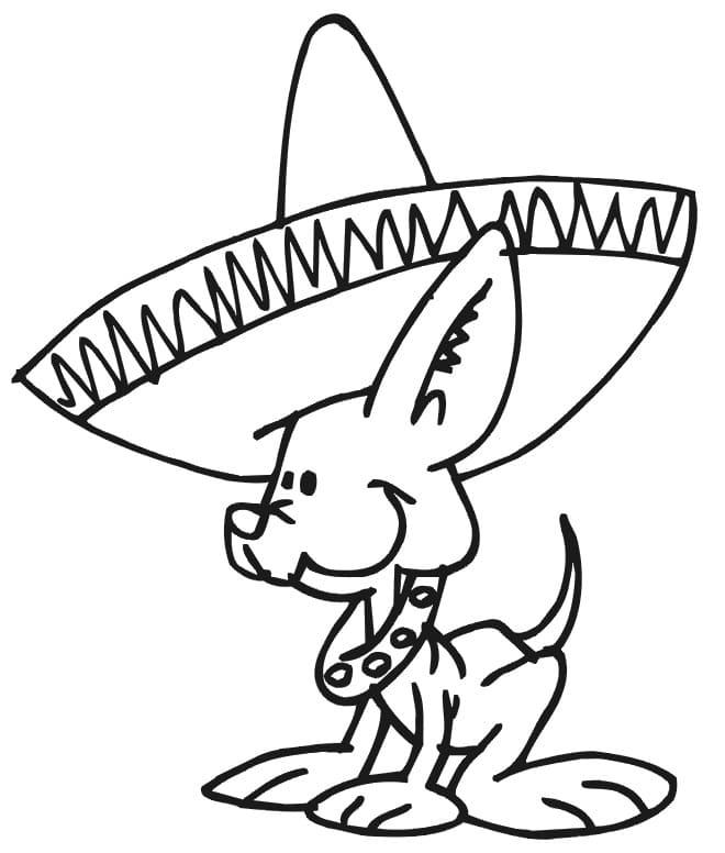 Dog and Sombrero