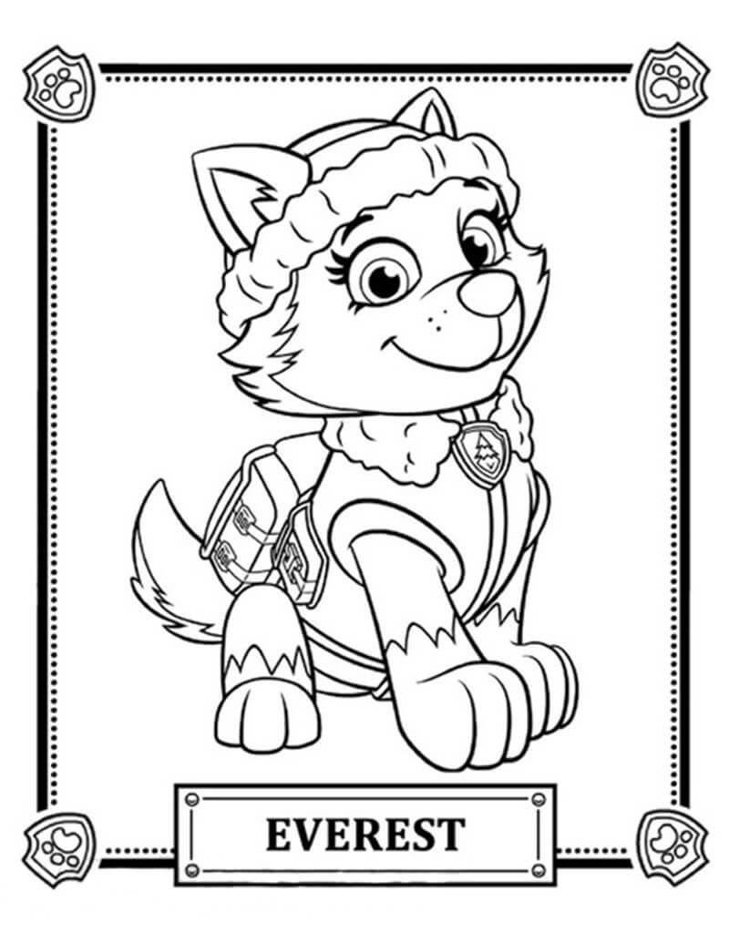 Everest Paw Patrol