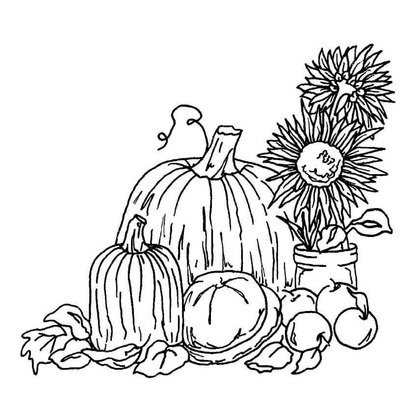 Fall Harvest 3