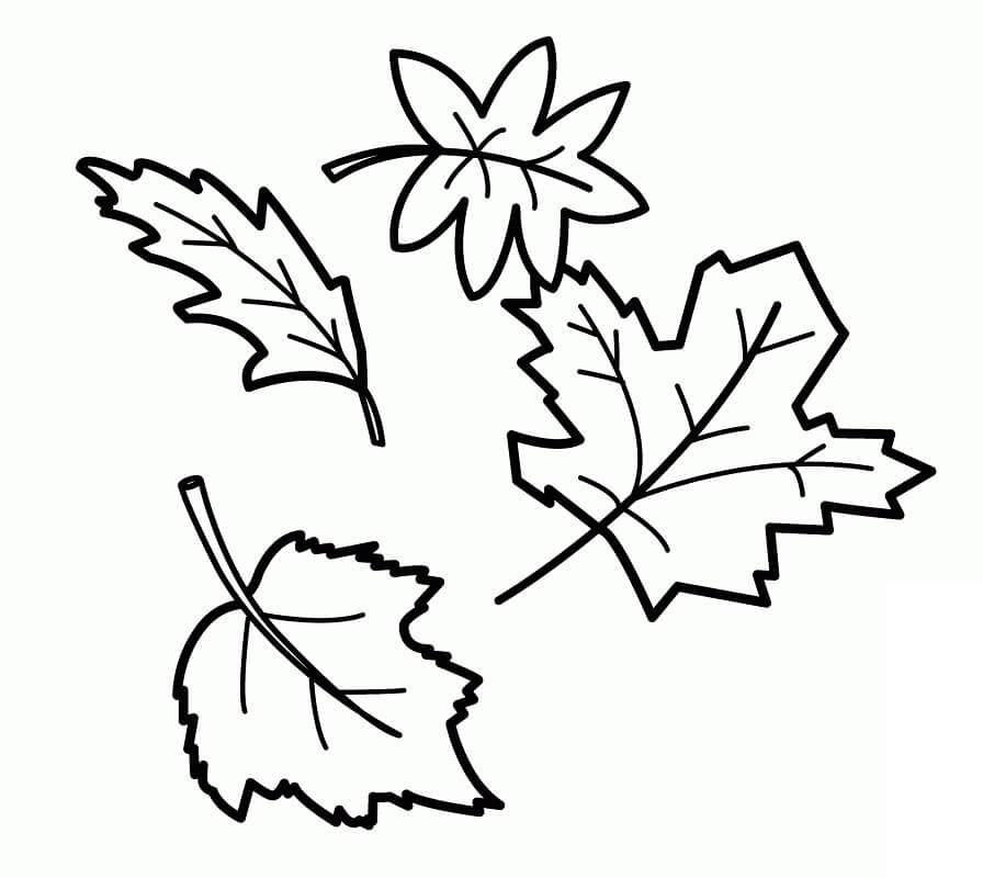 Fall Leaves 10
