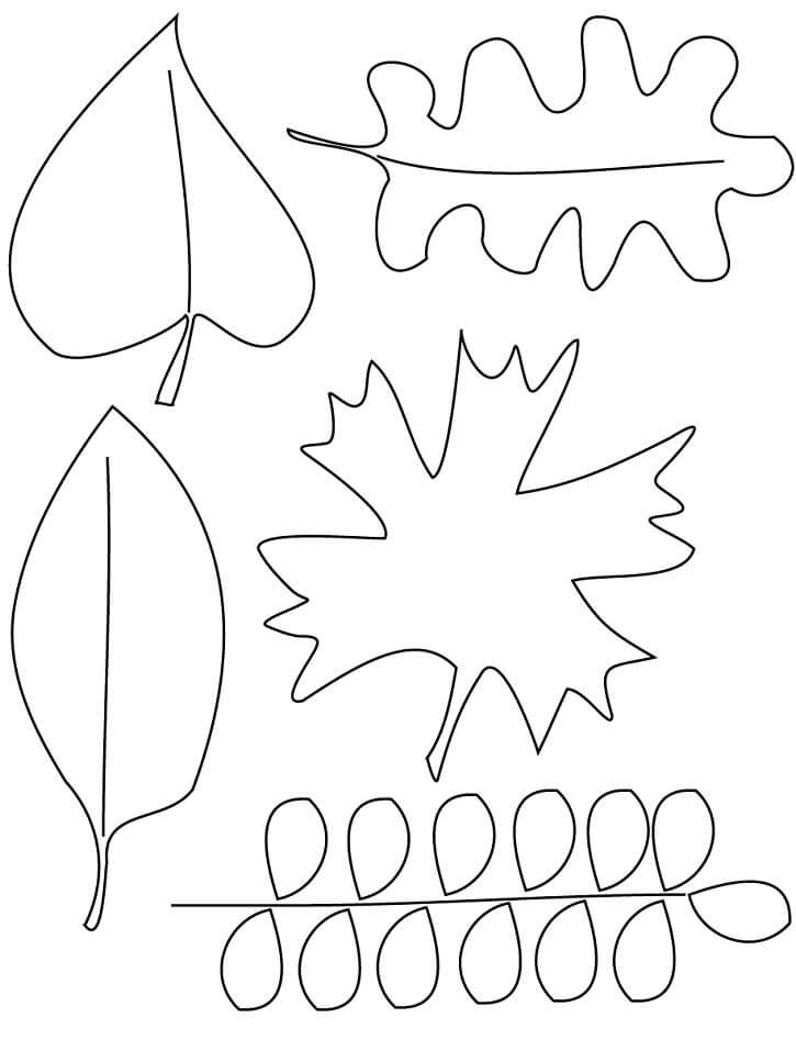 Fall Leaves 6