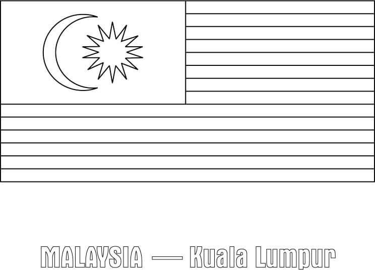 Flag of Malaysia 1