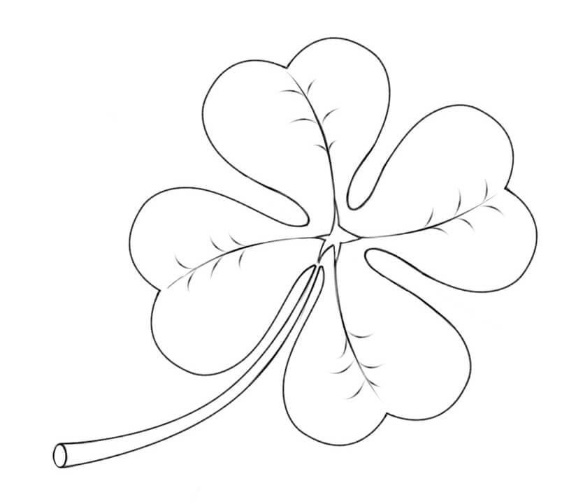 Four Leaf Clover 12