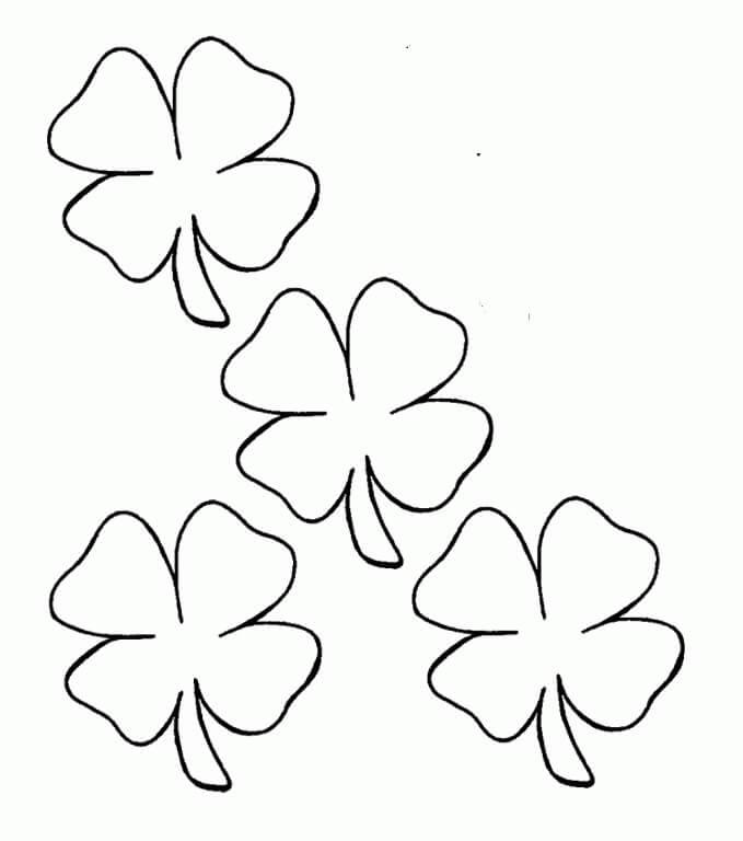 Four Leaf Clover 6