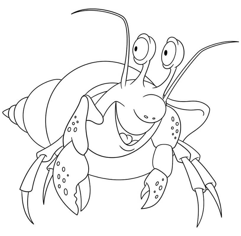 Funny Hermit Crab Smiling