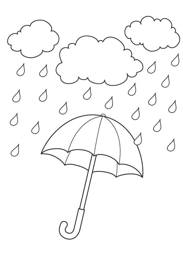 Great rainy day