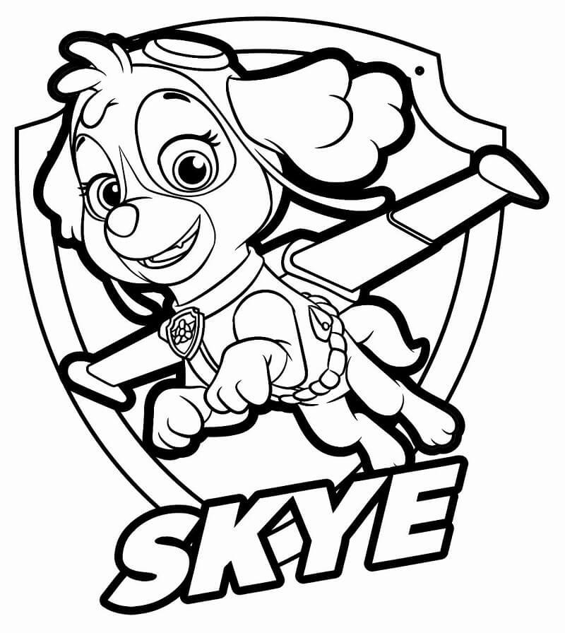 Happy Paw Patrol Skye