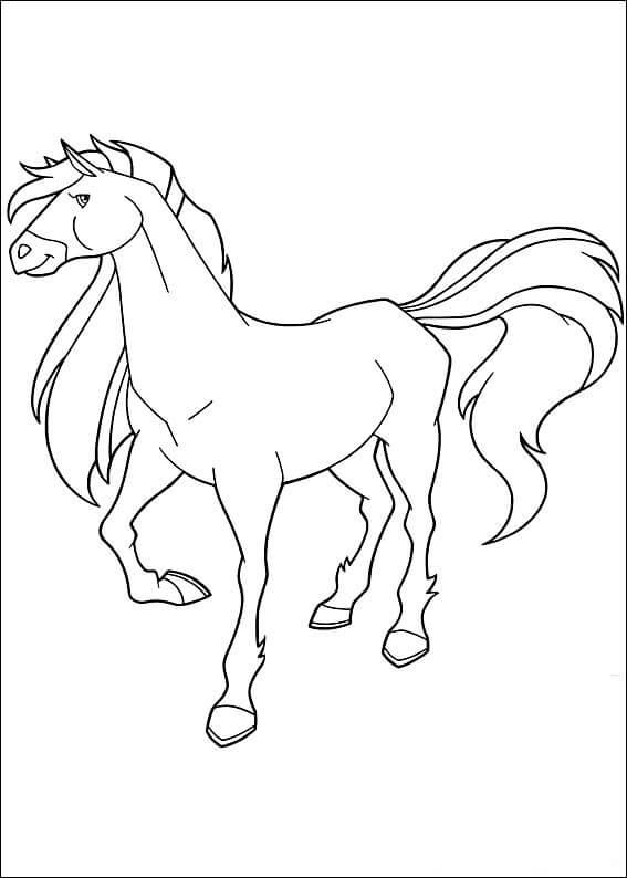 Horseland 5