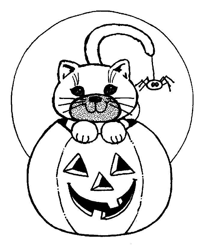 Jack o' Lantern with cat