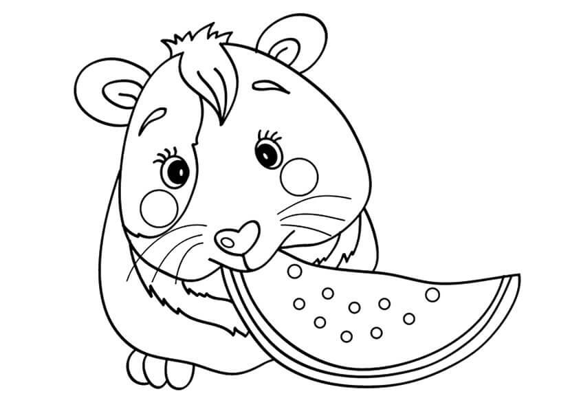 Kawaii Guinea Pig