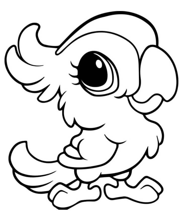 Kawaii Parrot