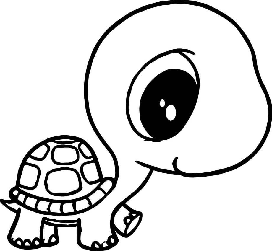 Kawaii Turtle